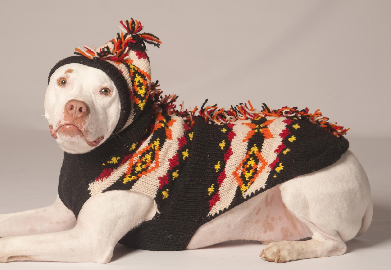 Dog Mohawk Sweater Mohawk Hoodie Dog Sweater