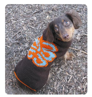 ALOHA dog sweater