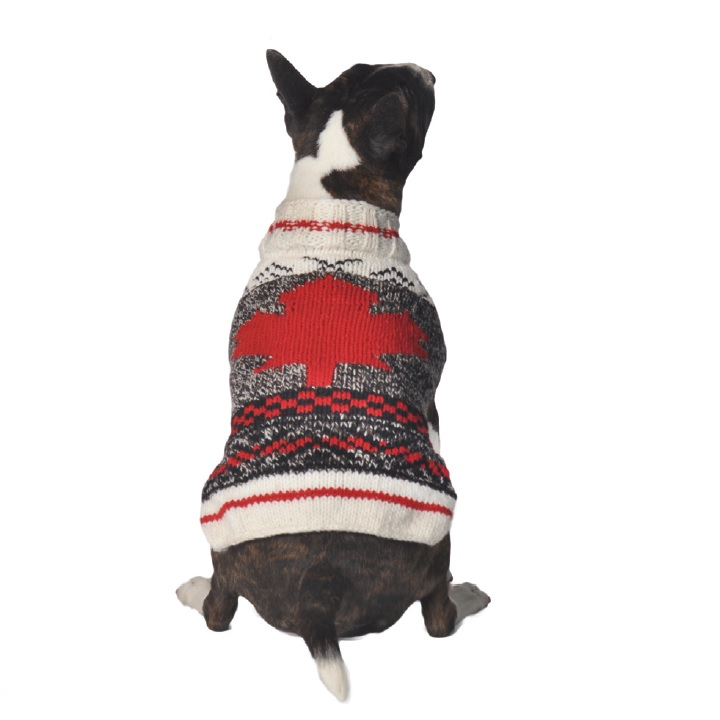 Camp Maple Leaf Dog Sweater - Chilly Dog Sweaters cca84972e