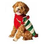 Christmas Elf Holiday Dog Sweater