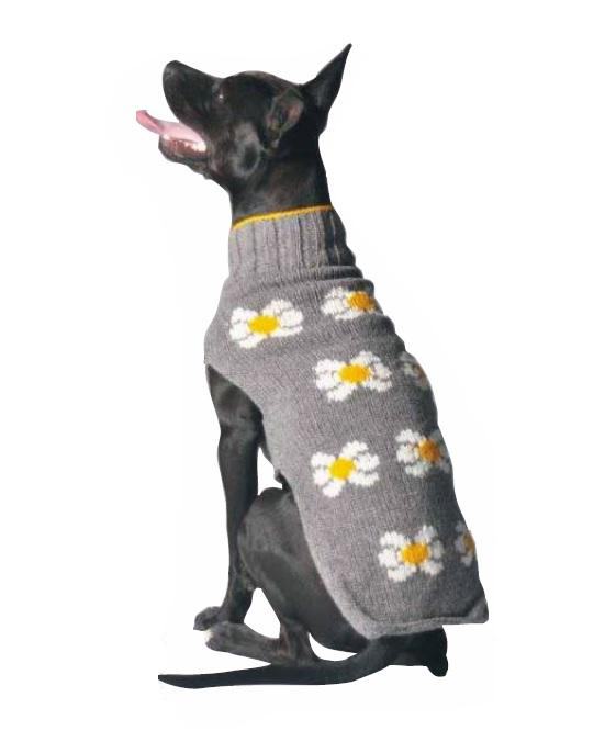 Daisy Dog Sweater