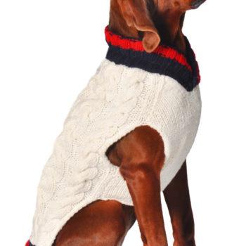 VarsitySweater451