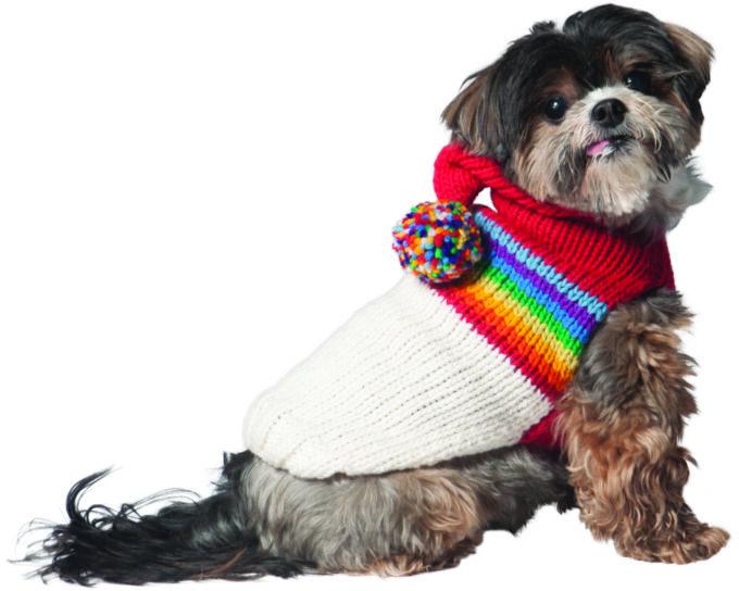 Vintage Ski Hoodie chilly dog badge
